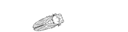 cropped-regal-provence-logo.png